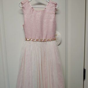 Light Pink with Gold Embellishment Girls Dress